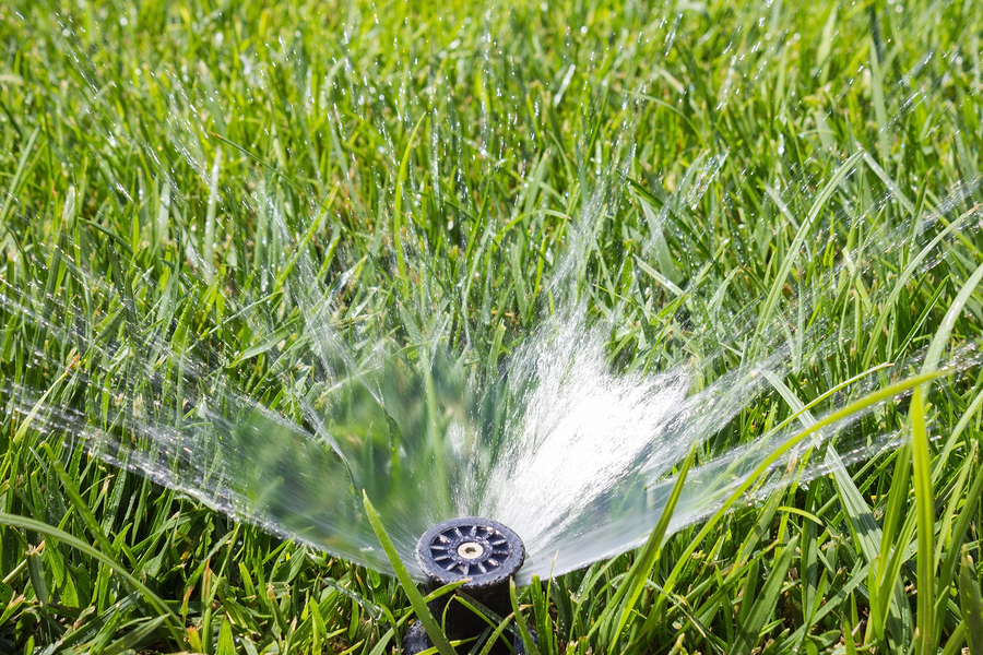 Watering-Restrictions-and-Irrigation
